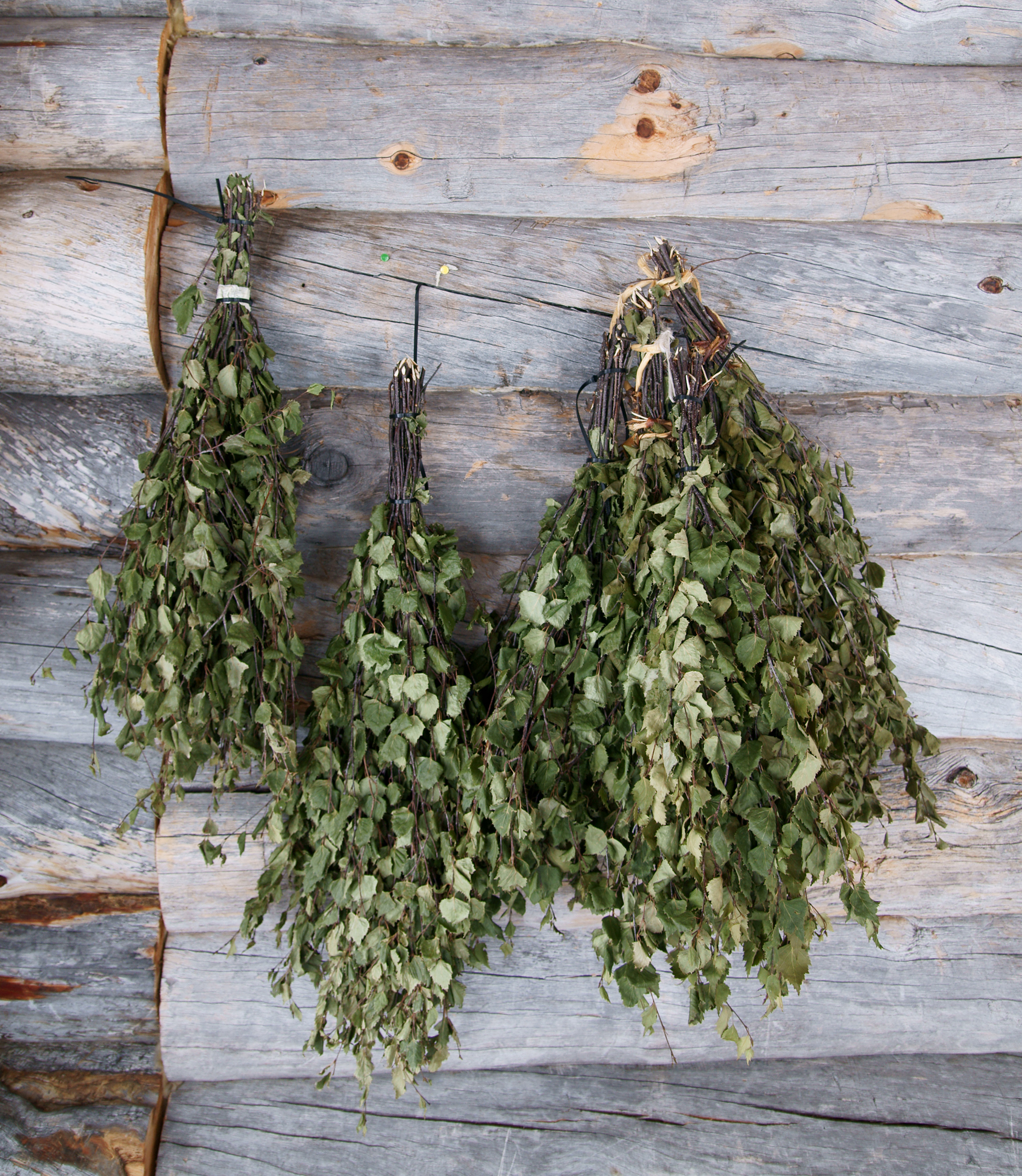 Веники - brooms made from birch leaves