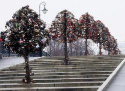 Luzhkov Bridge