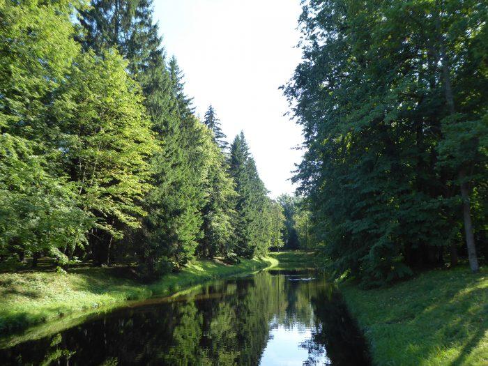 A lake in Verkhnii Garden